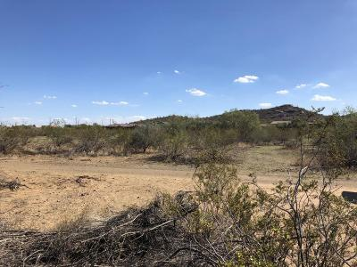 Phoenix Residential Lots & Land For Sale: 9xx E Carefree Highway