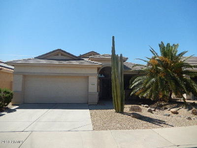 Surprise Single Family Home For Sale: 18133 W Camino Real Drive