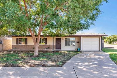 Tempe Single Family Home For Sale: 1225 E Susan Lane