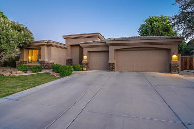 Chandler Single Family Home For Sale: 1105 W Musket Way