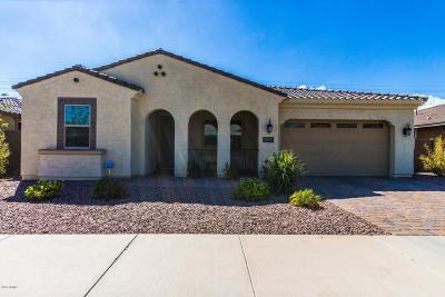 Queen Creek Single Family Home For Sale: 22071 E Estrella Road
