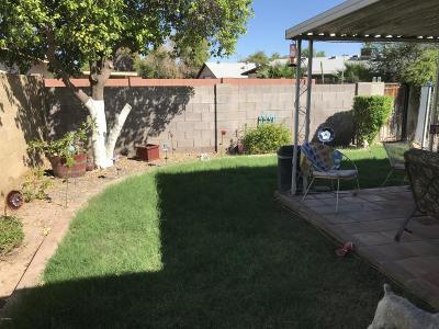 Tempe Single Family Home For Sale: 3511 S Juniper Street