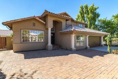 Gilbert Single Family Home For Sale: 341 E Catclaw Court