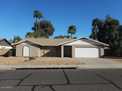 Phoenix Single Family Home For Sale: 836 E Paradise Lane