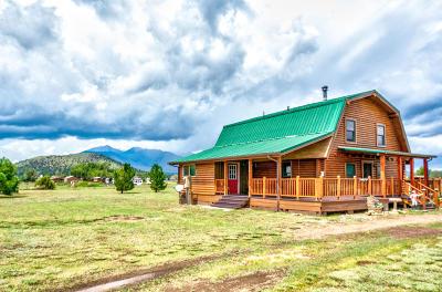 Flagstaff Single Family Home For Sale: 8275 E Mercury Drive