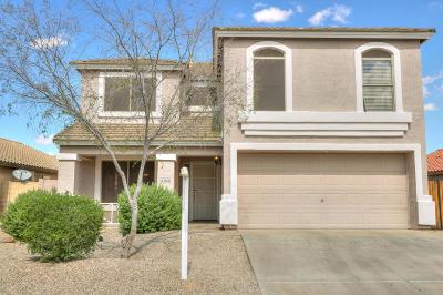 Maricopa Single Family Home For Sale: 43804 W Carey Drive