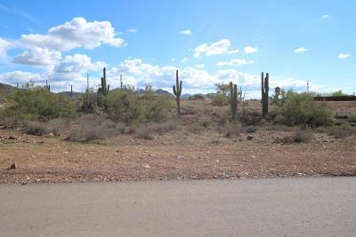 Phoenix Residential Lots & Land For Sale: 38841 N 16th Street