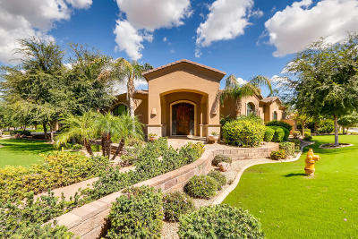 Chandler Single Family Home For Sale: 825 S Stellar Parkway
