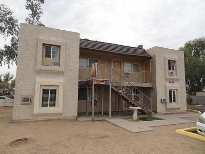 Phoenix Multi Family Home For Sale: 9648 12th Avenue