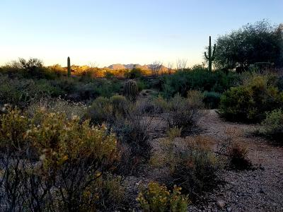 Scottsdale Residential Lots & Land For Sale: 7974 E Soaring Eagle Way