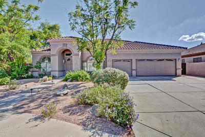 Gilbert Single Family Home For Sale: 1561 E Appaloosa Court