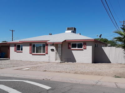 Phoenix Single Family Home For Sale: 8642 N 30th Drive