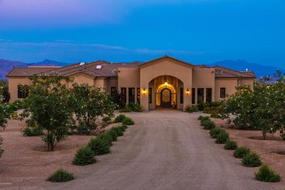 Rio Verde Foothills Single Family Home For Sale: 14507 E Red Bird Road