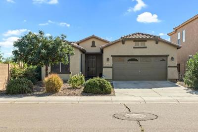 Queen Creek Single Family Home For Sale: 33467 N North Butte Drive