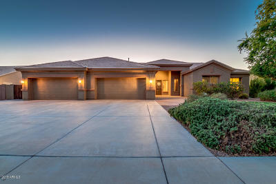 Queen Creek Single Family Home UCB (Under Contract-Backups): 20884 S Hadrian Way