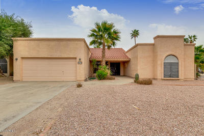 Phoenix Single Family Home For Sale: 4054 E Knox Road