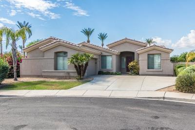 Palm Valley Single Family Home For Sale: 3204 N 146th Avenue