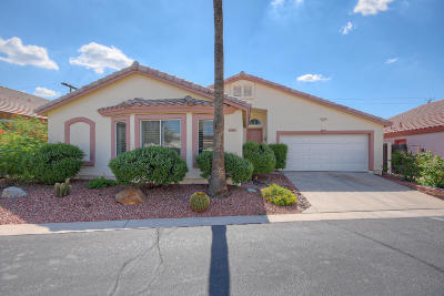 Paradise Valley Single Family Home For Sale: 8104 N 10th Place
