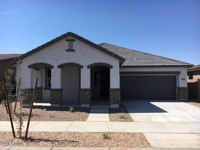 Queen Creek Single Family Home For Sale: 22801 E Via Del Palo