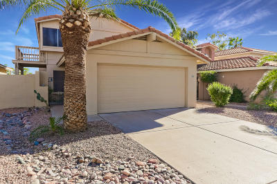 Mesa Single Family Home For Sale: 5349 E Elmwood Street