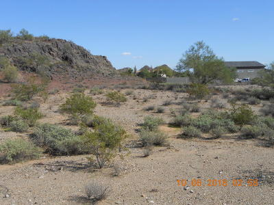 Surprise Residential Lots & Land For Sale: 16150 W Peak View Road