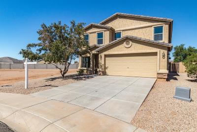Florence Single Family Home For Sale: 29858 E Ocotillo Circle