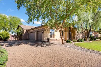 Gilbert Single Family Home For Sale: 633 S Parkcrest Street