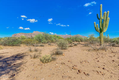 Apache Junction Residential Lots & Land For Sale: S Sixshooter Road