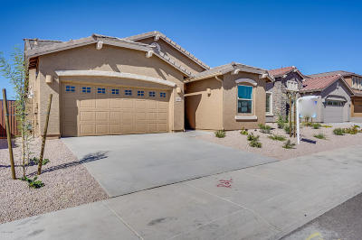 Cave Creek Single Family Home For Sale: 28848 N 40th Place