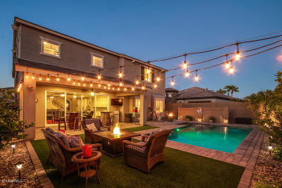 Phoenix Single Family Home For Sale: 2935 E Madison Vistas Drive