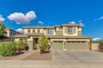 Mesa,  San Tan Valley,  Queen Creek, Gold Canyon Single Family Home For Sale: 4063 S St Claire