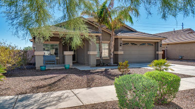 Queen Creek Single Family Home For Sale: 21775 E Estrella Road