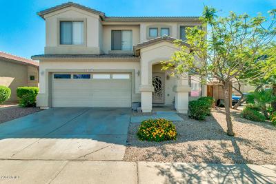 Mesa Single Family Home For Sale: 9905 E Florian Avenue