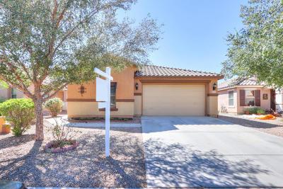 Maricopa Single Family Home For Sale: 40167 W Mary Lou Drive