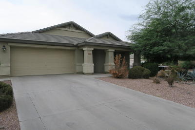 Tolleson Single Family Home For Sale: 10329 W Atlantis Way