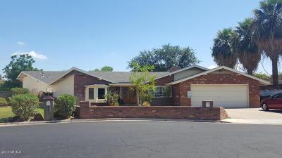 Mesa Commercial For Sale: 453 W Sunset Circle