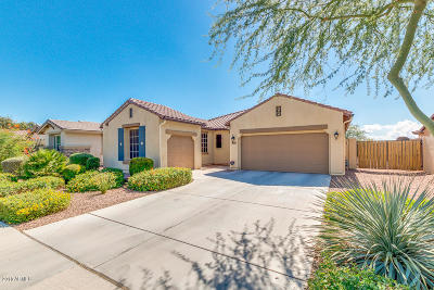 Litchfield Park Single Family Home For Sale: 14891 W Luna Drive S