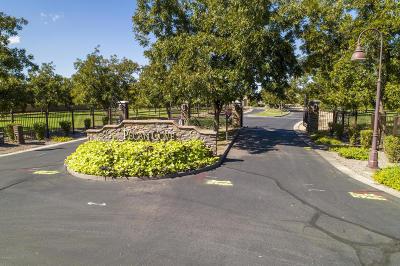 Queen Creek Residential Lots & Land For Sale: 20121 E Via De Olivos Court