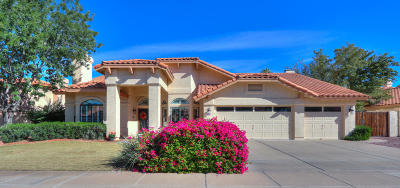 Chandler Single Family Home For Sale: 1590 W Hackberry Drive