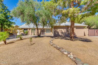 Phoenix Single Family Home For Sale: 3352 W Sandra Terrace