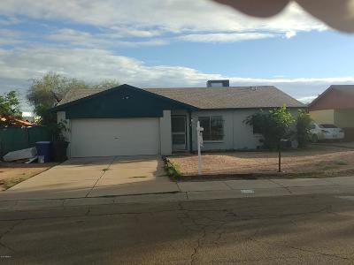 Tempe Single Family Home For Sale: 2319 E Laird Street