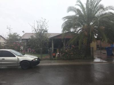 Phoenix Single Family Home For Sale: 7045 S 17th Avenue