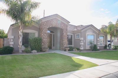 Gilbert Single Family Home For Sale: 3519 E Princeton Court