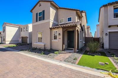 Mesa Single Family Home For Sale: 9729 E Axle Avenue