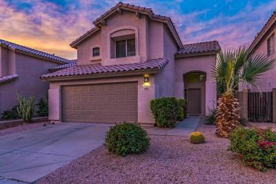 Phoenix Single Family Home For Sale: 4140 E Meadow Drive
