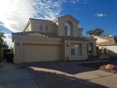 Chandler Single Family Home For Sale: 730 N Madrid Lane