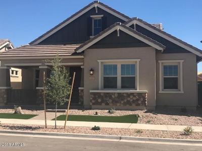 Gilbert Single Family Home For Sale: 4168 E Cynthia Street