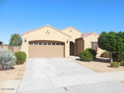 Goodyear Single Family Home For Sale: 16740 W Pima Street