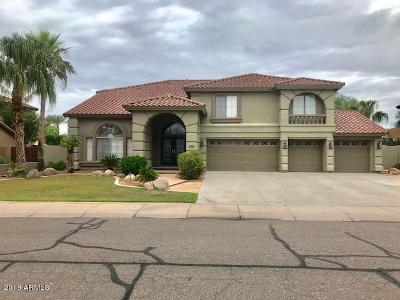 Chandler Single Family Home For Sale: 1410 E Horseshoe Drive