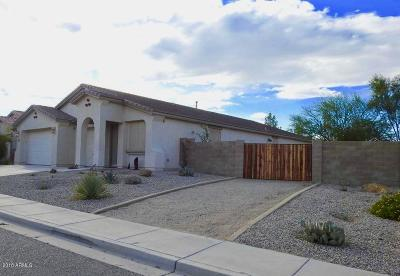 San Tan Valley Single Family Home For Sale: 1076 E Pasture Canyon Drive